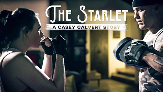 PureTaboo  Casey Calvert  A Casey Calvert Story